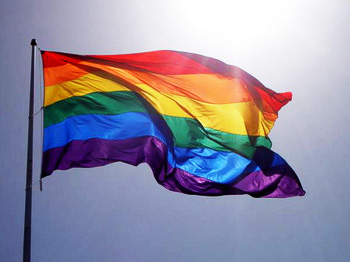gay_pride_rainbow_flag_2